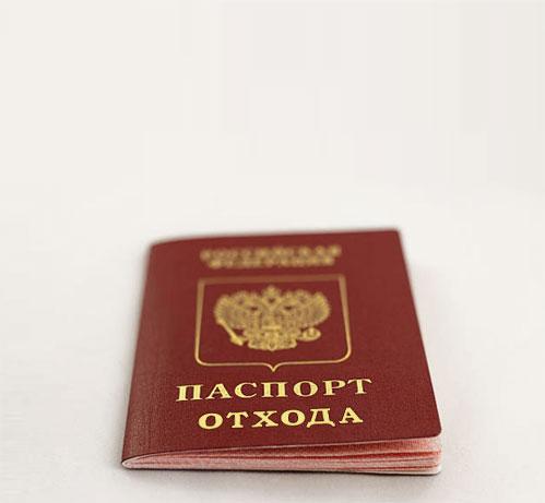 Паспорт отходов