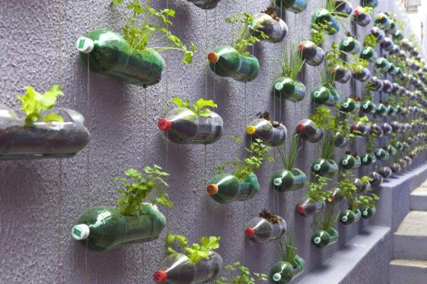 Инсталляция из пластиковых бутылок