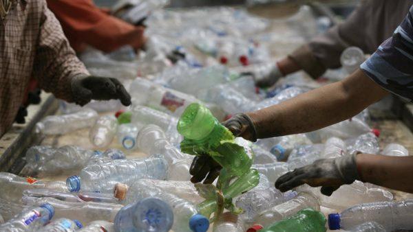 Сортировка пластиковых бутылок