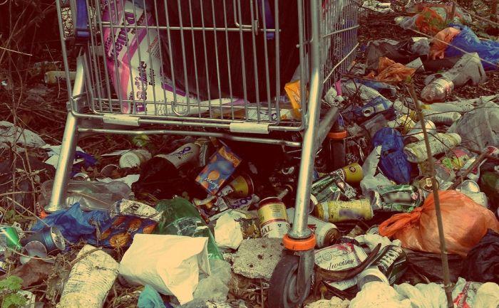 несанкционированные свалки мусора ответственность